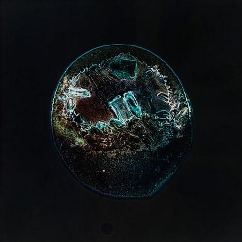 A&M's avatar