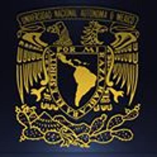 Luis MB 1's avatar