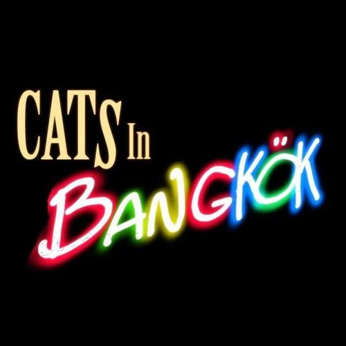 Cats in Bangkok's avatar