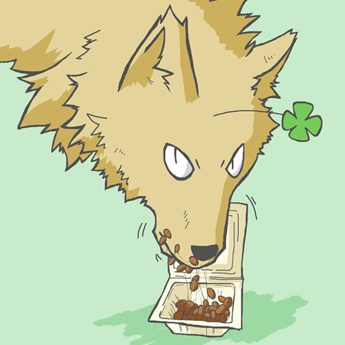 hitoookami's avatar
