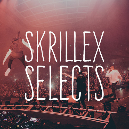 Skrillex Selects's avatar