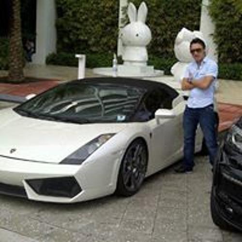 Luis Sanchez 582's avatar