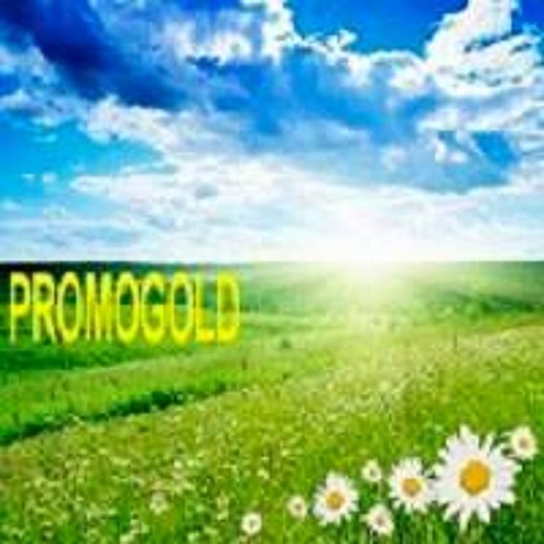 PROMOGOLD's avatar