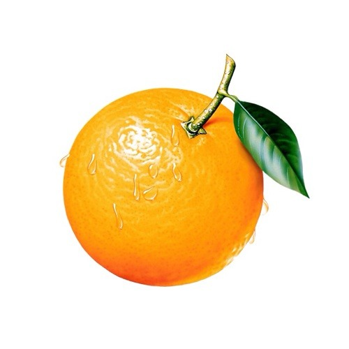 One North Orange's avatar