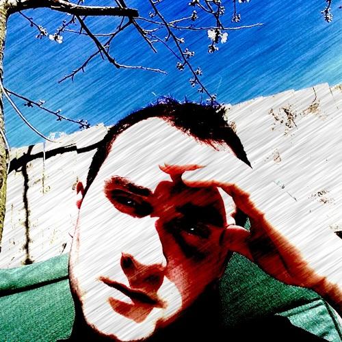 Lucian Balaj's avatar