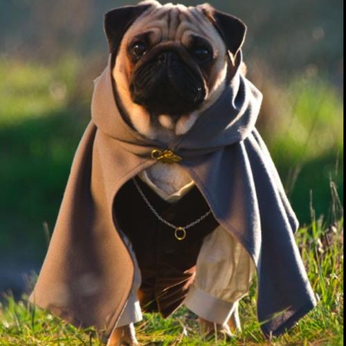 Visa Pug's avatar