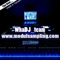 modul sampling indonesia