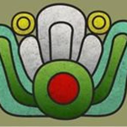 Casa Izcalli's avatar
