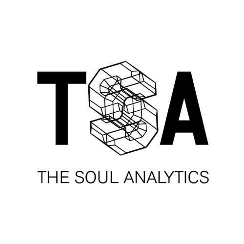 The Soul Analytics's avatar