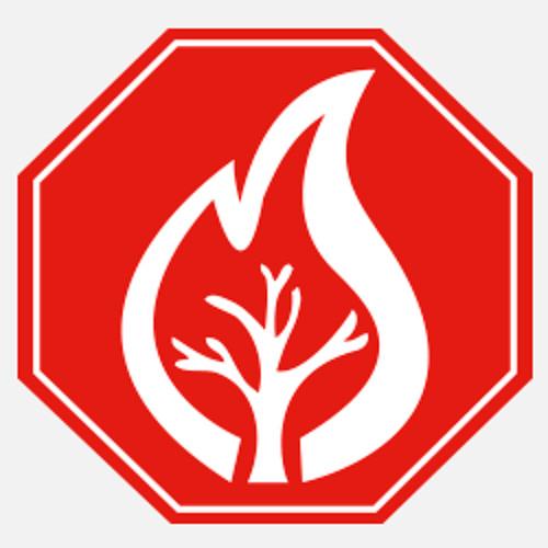 Alto Incendios Conaf's avatar