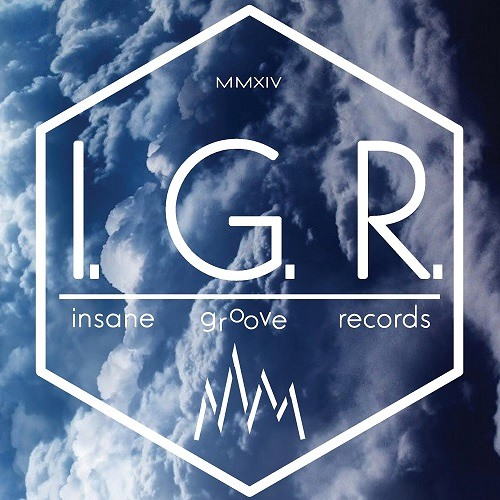 Insane Groove Records's avatar