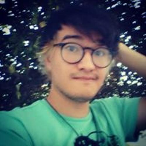 danilo.zampra's avatar