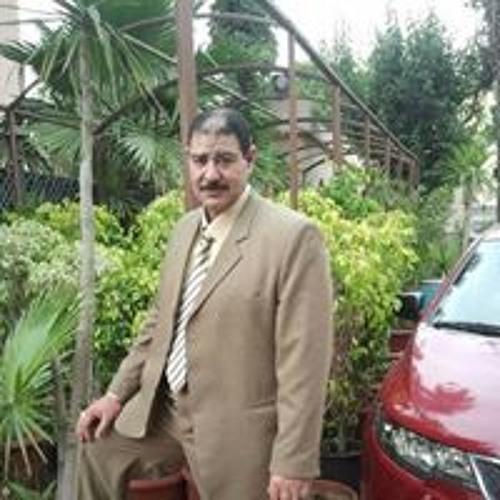Prof-Abd Elghny Mahmoud's avatar
