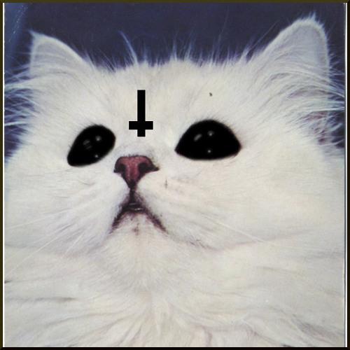 ✌yungsnuggles✌'s avatar