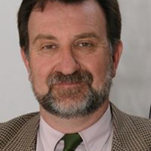 Daniel Pauni's avatar