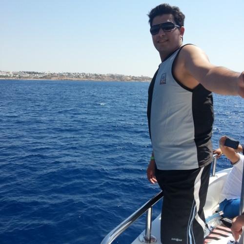 Mohamed Shokry 13's avatar