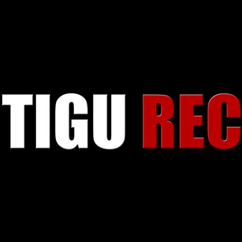 TIGU records's avatar