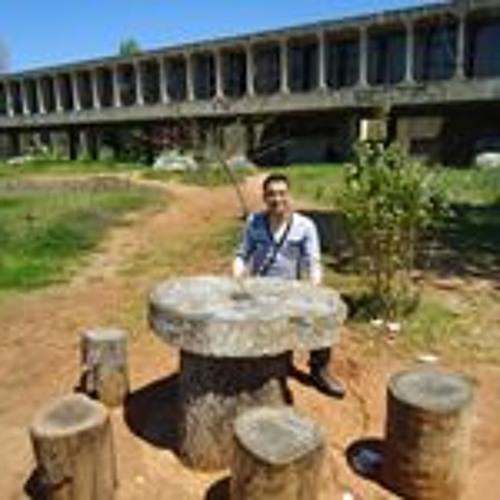 Azizou Dbb's avatar