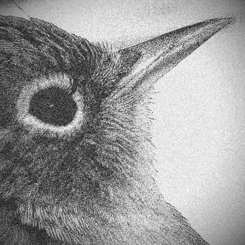 Birnsi's avatar