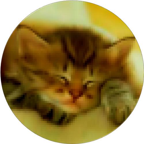 Paul Tardy's avatar