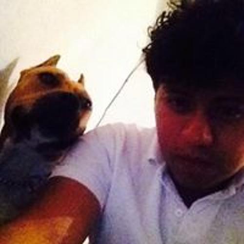 Gilberto Adrian Perez's avatar
