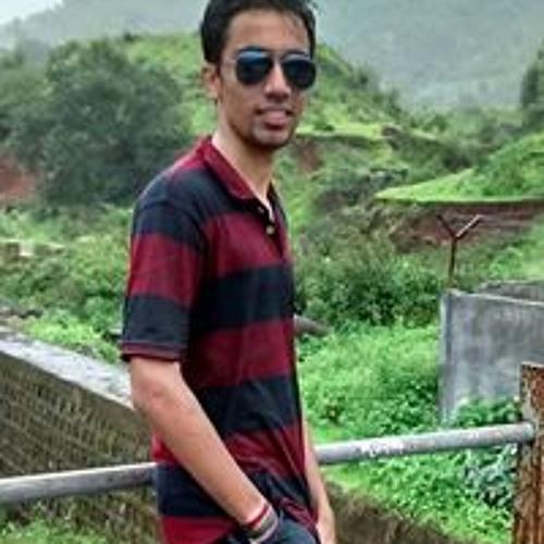 Pushkar Shinde 1's avatar