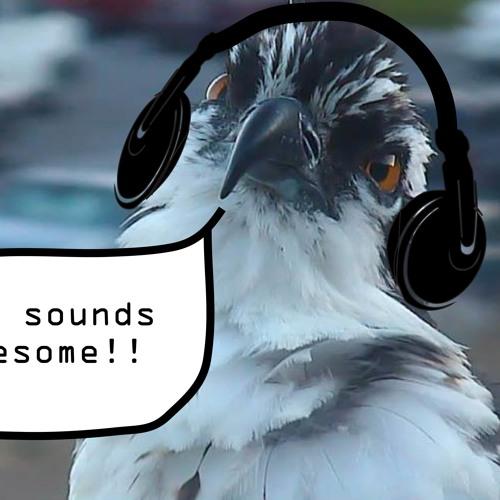 Osprey Cams Missoula's avatar