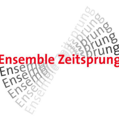 Ensemble Zeitsprung's avatar