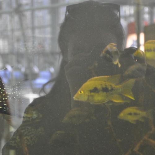 Niki Noc's avatar