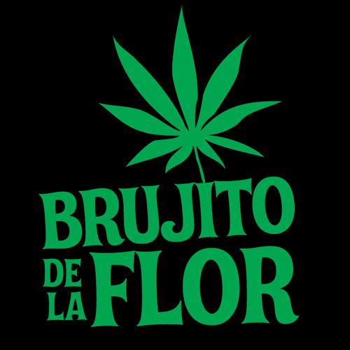 Brujito della flor's avatar