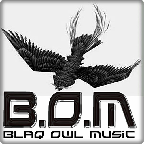 Blaq Owl Music (Ltd)'s avatar