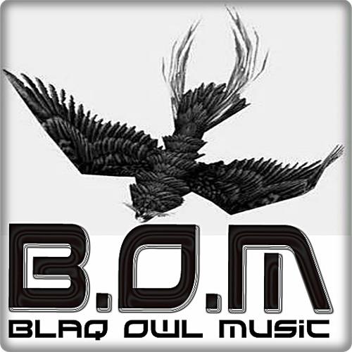 Blaq Owl Music (Ltd)'s avatar