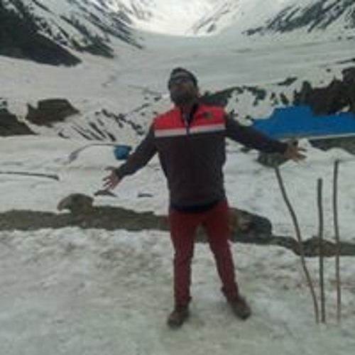Arjun Panjabi 1's avatar