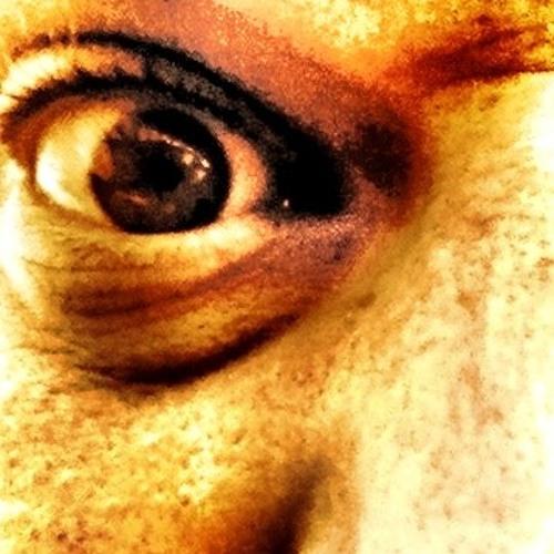 Dario Broccardo's avatar