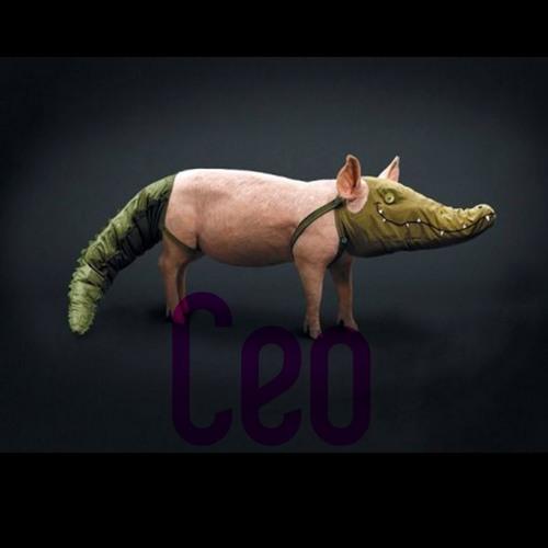 Ceo1's avatar
