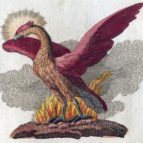 Clare L. Martin's avatar
