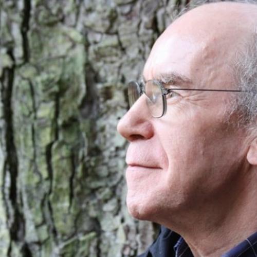 Werner Armingeon's avatar