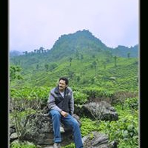 Pradipta Chakraborty's avatar