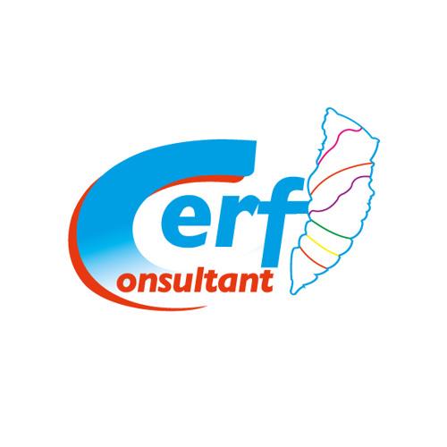 CERF Consultant's avatar