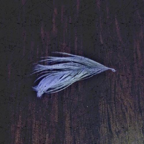 steven-salkeld's avatar