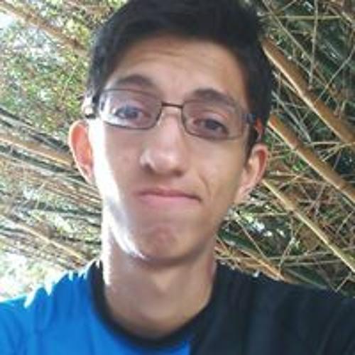 David L. Gomes's avatar