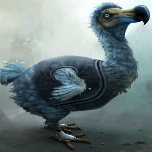 Khajarzo's avatar