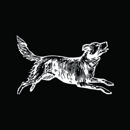 Kalob Griffin Band's avatar