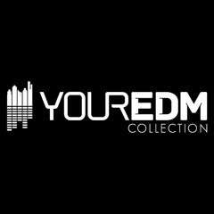 Your EDM's Collection