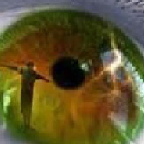 Leinad Akuls's avatar