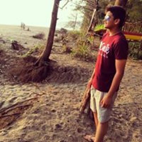 Mitesh Raje's avatar