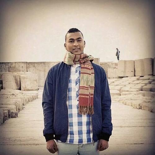hassanmounirian's avatar