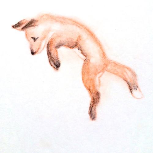 taniafoxymoon's avatar