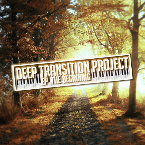Deep Transition Project's avatar