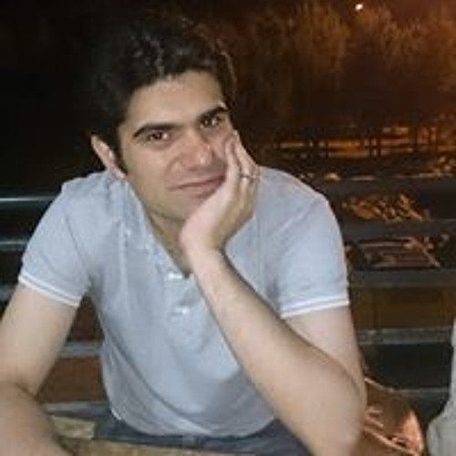 Farzin Aminsalehi's avatar